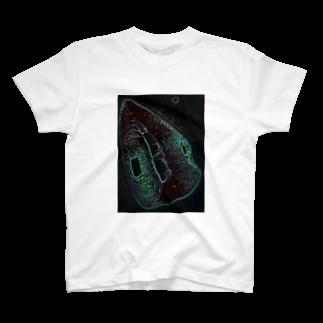 Akieem  ZawadiのGreen Rip T-shirts