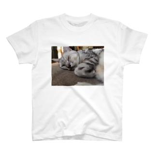 ねむねむあめしょのやまとくん T-shirts