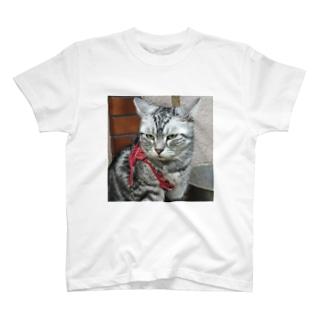 にゃおたむ T-shirts