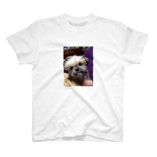 モカ T-shirts