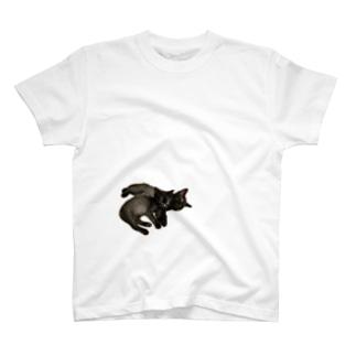 抱っ仔猫 T-shirts