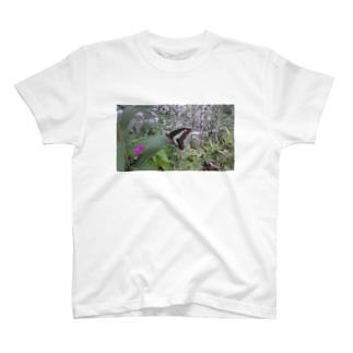 揚羽蝶 T-shirts