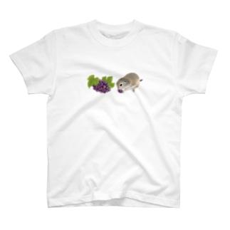 リチャードソンジリス・grape T-Shirt
