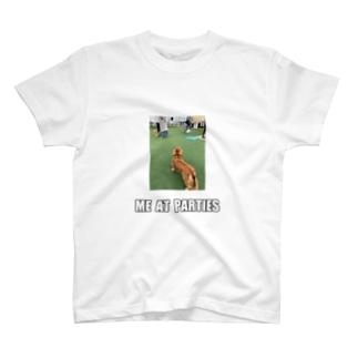 犬のミームTシャツ T-shirts