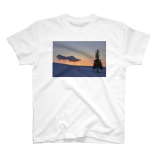 クリスマスツリーの木01 T-shirts