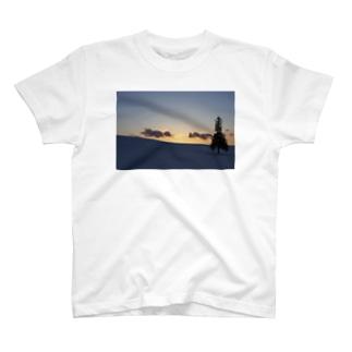 クリスマスツリーの木02 T-shirts