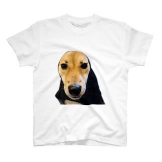 日向教祖様 T-shirts