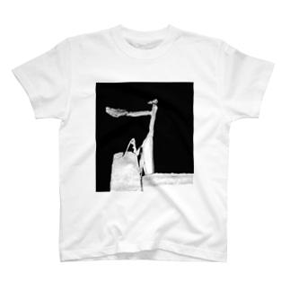 Mantis man T-shirts