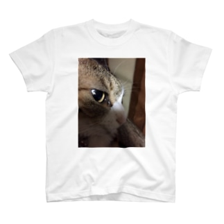 ねずみじゃないよ。猫だよ。 T-shirts