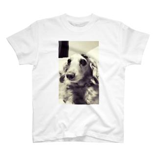 ちょこりん T-shirts