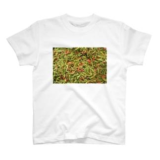 スパイス001 T-shirts