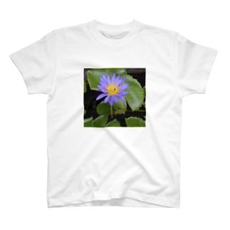 青いハス001 T-shirts