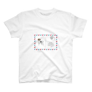 ポストカードの犬 T-shirts