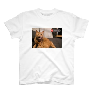 emergency cat T-shirts
