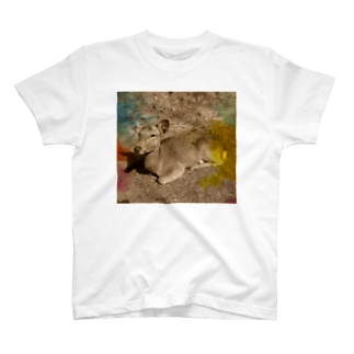 I love Nara. T-shirts