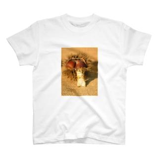 大きな栗と、栗鼠の風景 T-shirts