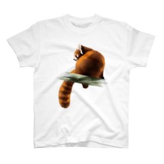 Animals シリーズ 〜レッサーパンダ〜 T-shirts