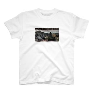 世界温泉遺産_神秘の力を訪ねて_美の国_フランスを潤す神秘の湯_遠藤憲一 May 5, 2011 T-shirts