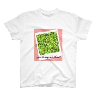 you're my sunshine! T-shirts