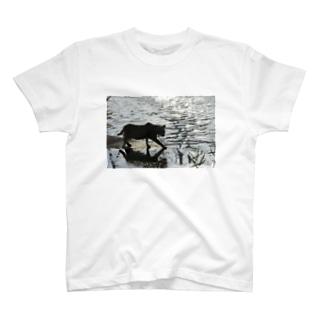 水辺の帰り道 T-shirts