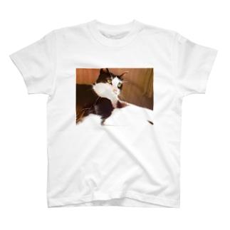 ちーちゃんの 世界 T-shirts