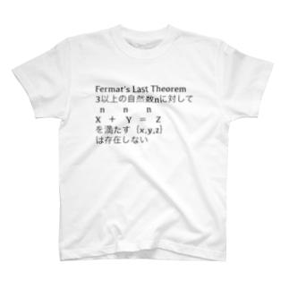 フェルマーの最終定理 T-shirts