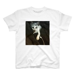 Love my プーチン T-shirts