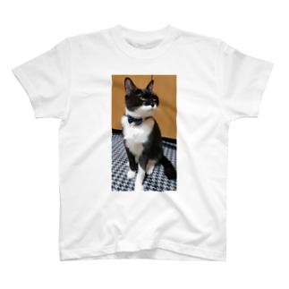 ミリちゃんTシャツ T-shirts