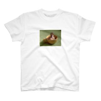 カップアイガモ2 T-shirts
