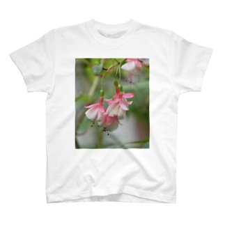 """花染めの箱庭のフクシア""""ペパーミント・キャンディ"""" T-shirts"""