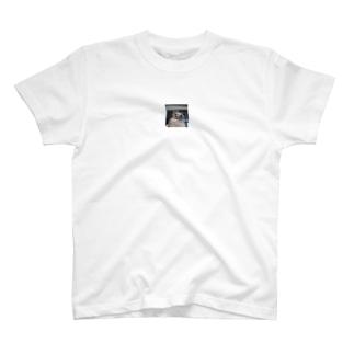 ウズラのゆず子さんグッズ T-shirts