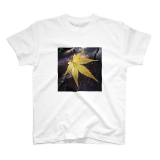 モミジ T-shirts