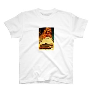 Volvo Amazon P120  T-shirts