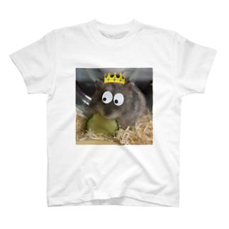 Djun T-shirts