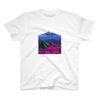 Fujisa〜n! HARU  T-shirts