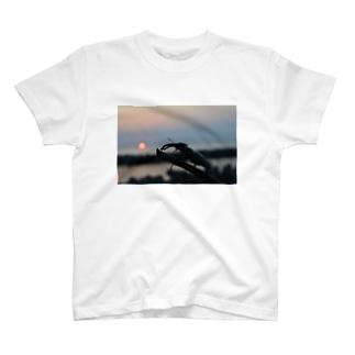 クワガタ♂ T-shirts