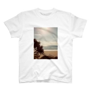 Sunshine beach T-shirts