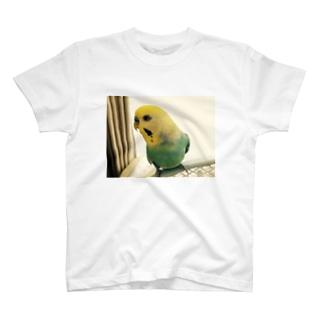 いんこ3 T-shirts