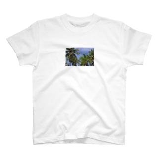 トコナツ常夏TOKONATSU T-shirts