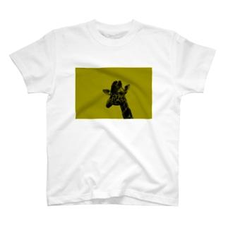 キリン T-shirts