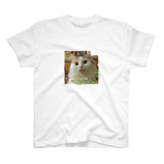 世界で一番ふわふわ! T-shirts