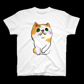 アコルのへちゃねこ T-shirts