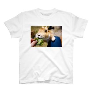 うさぎ島 T-shirts