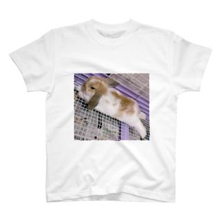 うさぎさんTシャツ<リラックス> T-shirts