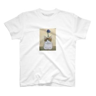 寅シリーズ T-shirts