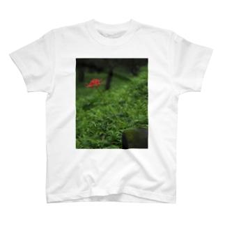 彼岸花一輪 T-shirts