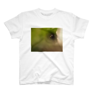 かごしまエモいぜの猫目 T-shirts