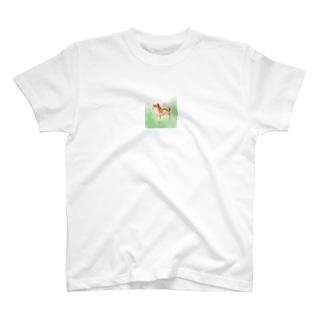 しばいぬdays T-shirts