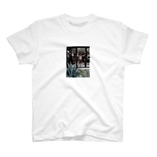 統括Tシャツ T-shirts