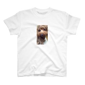 ビア T-shirts
